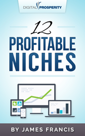 12 Profitable Niches Report